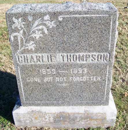 THOMPSON, CHARLIE - Washington County, Arkansas | CHARLIE THOMPSON - Arkansas Gravestone Photos