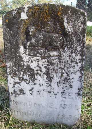 TYLER, VASILA? - Washington County, Arkansas | VASILA? TYLER - Arkansas Gravestone Photos