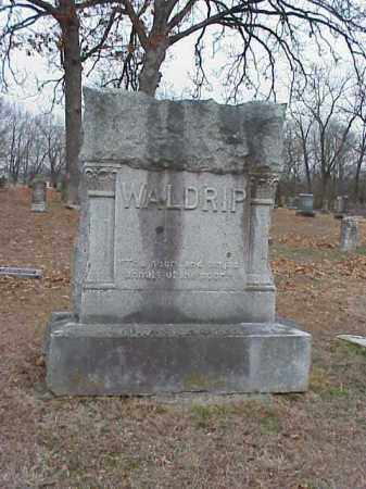 WALDRIP, FAMILY STONE - Washington County, Arkansas | FAMILY STONE WALDRIP - Arkansas Gravestone Photos