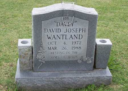 "WANTLAND, DAVID JOSEPH ""DAVEY"" - Washington County, Arkansas 