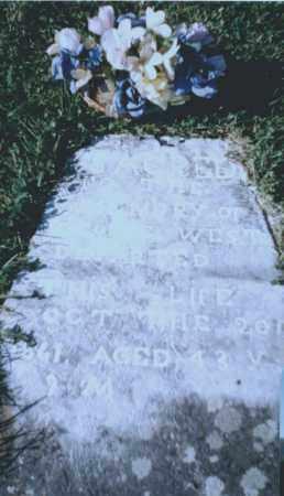 WEST, GEORGE - Washington County, Arkansas | GEORGE WEST - Arkansas Gravestone Photos