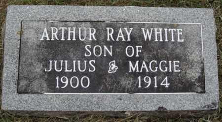 WHITE, ARTHUR RAY - Washington County, Arkansas   ARTHUR RAY WHITE - Arkansas Gravestone Photos