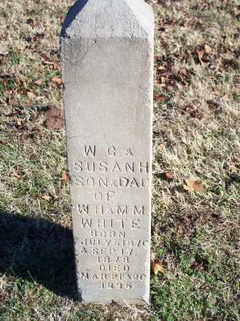 WHITE, W. C. - Washington County, Arkansas | W. C. WHITE - Arkansas Gravestone Photos