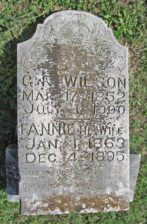 WILSON, FANNIE - Washington County, Arkansas | FANNIE WILSON - Arkansas Gravestone Photos