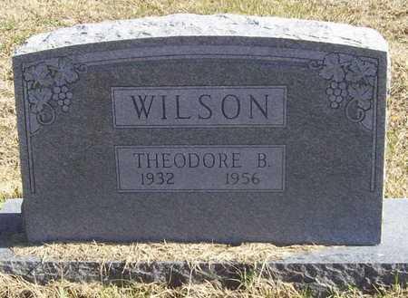WILSON, THEODORE B - Washington County, Arkansas   THEODORE B WILSON - Arkansas Gravestone Photos