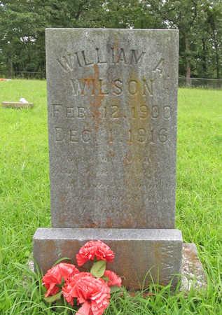 WILSON, WILLIAM A - Washington County, Arkansas | WILLIAM A WILSON - Arkansas Gravestone Photos