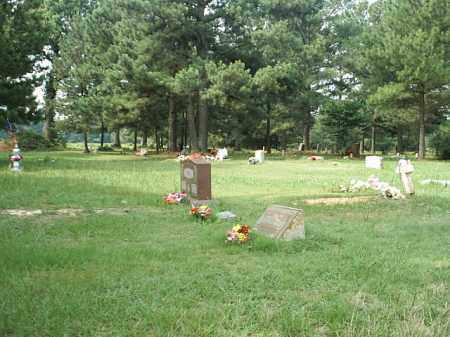 *BETHLEHEM OVERVIEW,  - White County, Arkansas |  *BETHLEHEM OVERVIEW - Arkansas Gravestone Photos