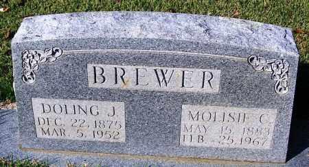 BREWER, MOLISIE C - White County, Arkansas | MOLISIE C BREWER - Arkansas Gravestone Photos