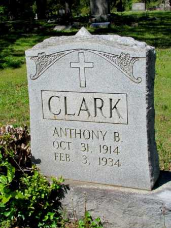 CLARK, ANTHONY B - White County, Arkansas | ANTHONY B CLARK - Arkansas Gravestone Photos