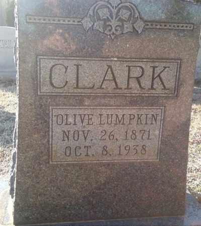 CLARK, OLIVE - White County, Arkansas   OLIVE CLARK - Arkansas Gravestone Photos