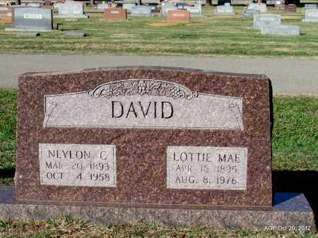DAVID, LOTTIE MAE - White County, Arkansas   LOTTIE MAE DAVID - Arkansas Gravestone Photos