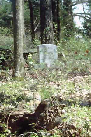 *DUPRIEST CEMETERY OVERVIER (2,  - White County, Arkansas |  *DUPRIEST CEMETERY OVERVIER (2 - Arkansas Gravestone Photos