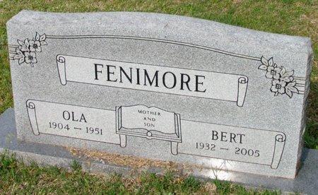 FENIMORE, OLA - White County, Arkansas   OLA FENIMORE - Arkansas Gravestone Photos