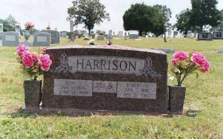 HARRISON, ROBERT NELSON - White County, Arkansas | ROBERT NELSON HARRISON - Arkansas Gravestone Photos