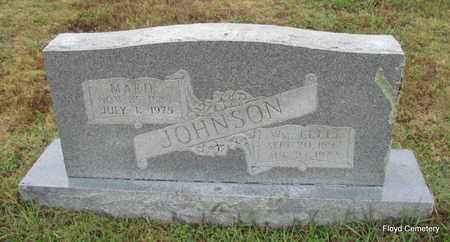 JOHNSON, WM ELLIS - White County, Arkansas | WM ELLIS JOHNSON - Arkansas Gravestone Photos