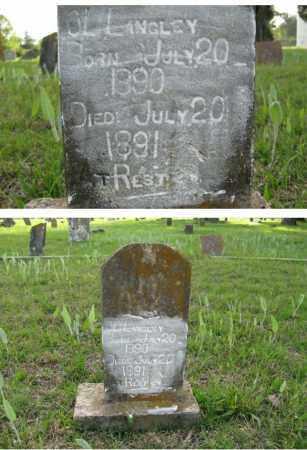 LANGLEY, O. L. - White County, Arkansas   O. L. LANGLEY - Arkansas Gravestone Photos