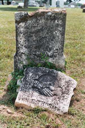 THURMAN, ANN ELIZABETH - White County, Arkansas | ANN ELIZABETH THURMAN - Arkansas Gravestone Photos