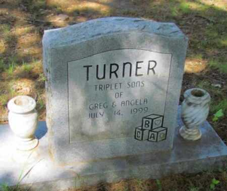 TURNER, TRIPLET SONS - White County, Arkansas | TRIPLET SONS TURNER - Arkansas Gravestone Photos