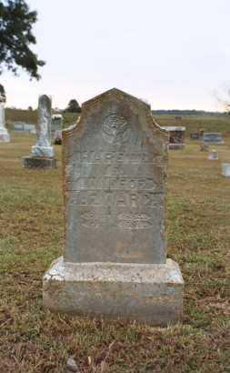 VINCENT WARD, HARRIET EMALINE - White County, Arkansas | HARRIET EMALINE VINCENT WARD - Arkansas Gravestone Photos