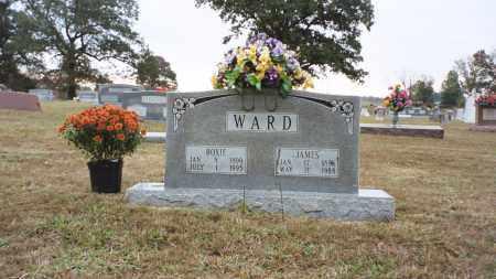 RIGGINS WARD, ROXIE - White County, Arkansas | ROXIE RIGGINS WARD - Arkansas Gravestone Photos