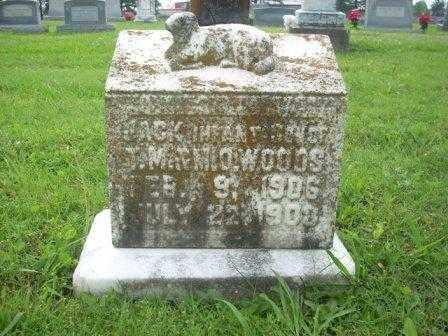 WOODS, JACK - White County, Arkansas | JACK WOODS - Arkansas Gravestone Photos