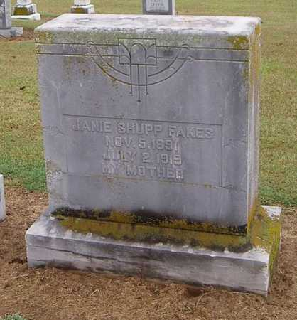 FAKES, JANIE - Woodruff County, Arkansas | JANIE FAKES - Arkansas Gravestone Photos