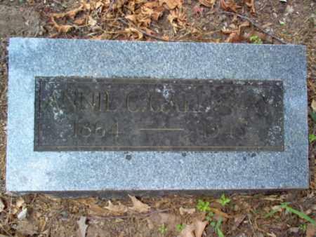 GALLOWAY, ANNIE CATHERINE - Woodruff County, Arkansas | ANNIE CATHERINE GALLOWAY - Arkansas Gravestone Photos