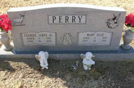 PERRY, SR, CHARLES JAMES - Woodruff County, Arkansas | CHARLES JAMES PERRY, SR - Arkansas Gravestone Photos