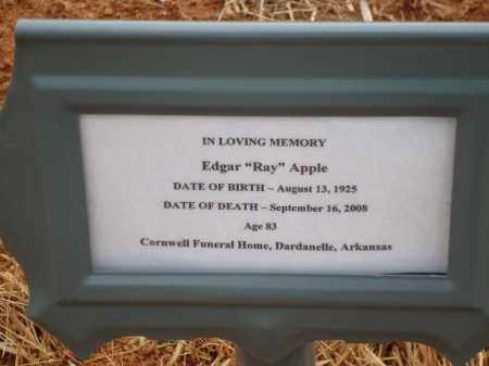 "APPLE, EDGAR ""RAY"" - Yell County, Arkansas 