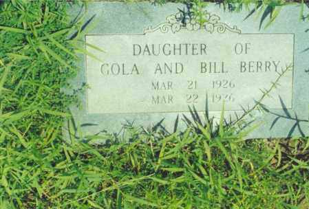 BERRY, DAUGHTER OF GOLA AND BILL - Yell County, Arkansas | DAUGHTER OF GOLA AND BILL BERRY - Arkansas Gravestone Photos