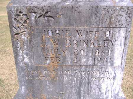 BRINKLEY, JOSIE - Yell County, Arkansas | JOSIE BRINKLEY - Arkansas Gravestone Photos