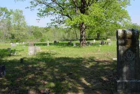 *RILEY CREEK OVERVIEW,  - Yell County, Arkansas    *RILEY CREEK OVERVIEW - Arkansas Gravestone Photos