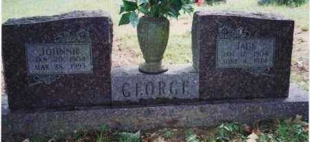 FOSTER GEORGE, JOHNNIE TINA - Yell County, Arkansas | JOHNNIE TINA FOSTER GEORGE - Arkansas Gravestone Photos