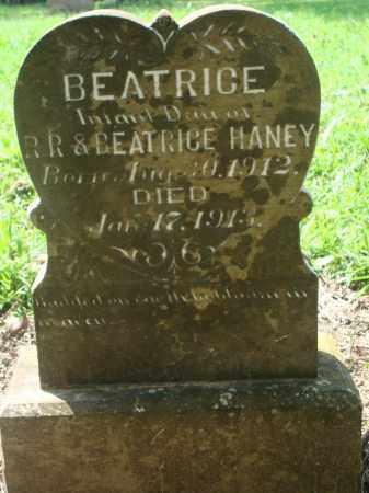HANEY, BEATRICE - Yell County, Arkansas | BEATRICE HANEY - Arkansas Gravestone Photos