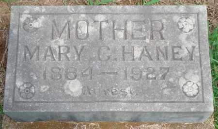 HANEY, MARY C - Yell County, Arkansas | MARY C HANEY - Arkansas Gravestone Photos