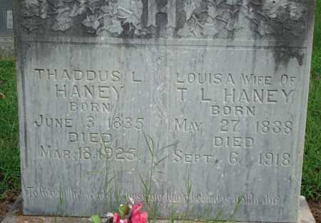 HANEY, LOUISA - Yell County, Arkansas   LOUISA HANEY - Arkansas Gravestone Photos
