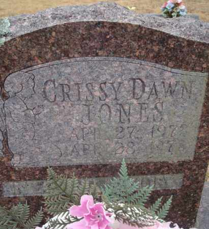 JONES, CRISSY DAWN - Yell County, Arkansas | CRISSY DAWN JONES - Arkansas Gravestone Photos