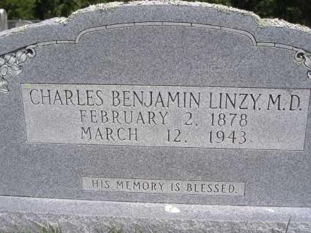 LINZY, CHARLES BENJAMIN (MD) - Yell County, Arkansas | CHARLES BENJAMIN (MD) LINZY - Arkansas Gravestone Photos