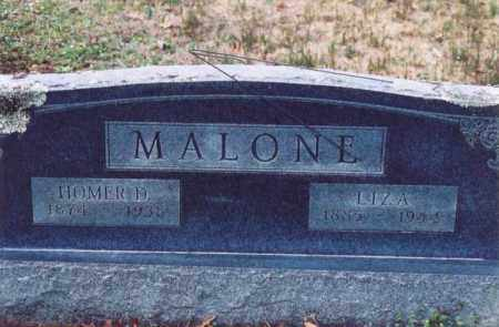MALONE, LIZA - Yell County, Arkansas | LIZA MALONE - Arkansas Gravestone Photos