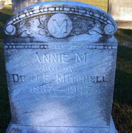 MITCHELL, ANNIE M - Yell County, Arkansas   ANNIE M MITCHELL - Arkansas Gravestone Photos