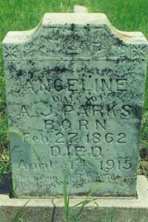 PARKS, ANGELINE - Yell County, Arkansas   ANGELINE PARKS - Arkansas Gravestone Photos