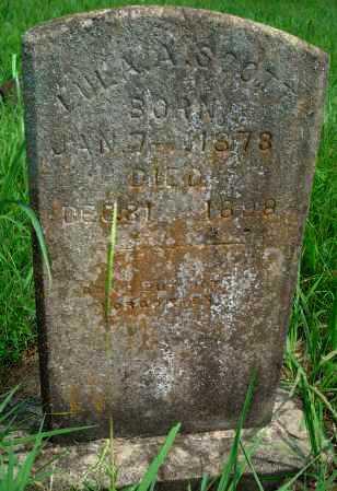 SCOTT, LULA A - Yell County, Arkansas | LULA A SCOTT - Arkansas Gravestone Photos