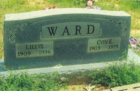 WARD, COY ELBERT - Yell County, Arkansas   COY ELBERT WARD - Arkansas Gravestone Photos