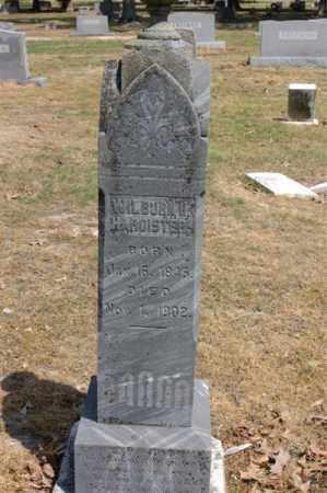 HARDISTER, WILBURN - Arkansas County, Arkansas | WILBURN HARDISTER - Arkansas Gravestone Photos
