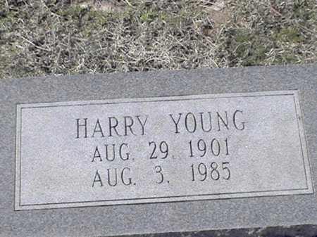 YOUNG, HARRY - Arkansas County, Arkansas   HARRY YOUNG - Arkansas Gravestone Photos