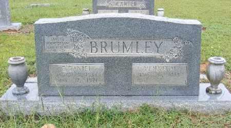 BRUMLEY, E. DANIEL - Ashley County, Arkansas | E. DANIEL BRUMLEY - Arkansas Gravestone Photos