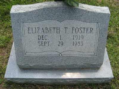 FOSTER, ELIZABETH - Ashley County, Arkansas | ELIZABETH FOSTER - Arkansas Gravestone Photos