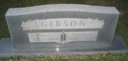 GIBSON, CARRIE W. - Ashley County, Arkansas | CARRIE W. GIBSON - Arkansas Gravestone Photos
