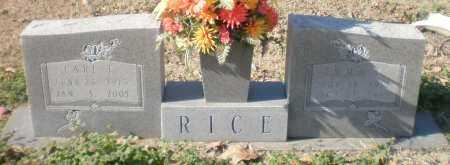 RICE, CARL T - Ashley County, Arkansas | CARL T RICE - Arkansas Gravestone Photos