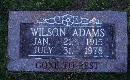 ADAMS, WILSON - Baxter County, Arkansas | WILSON ADAMS - Arkansas Gravestone Photos